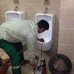 xử lý mùi hôi nhà vệ sinh