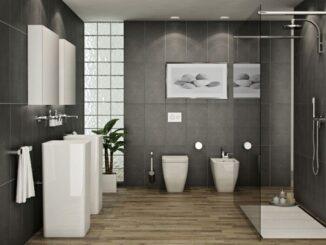 Lưu ý khi thiết kế nhà vệ sinh